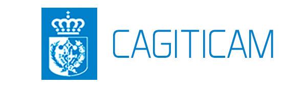 CAGITICAM